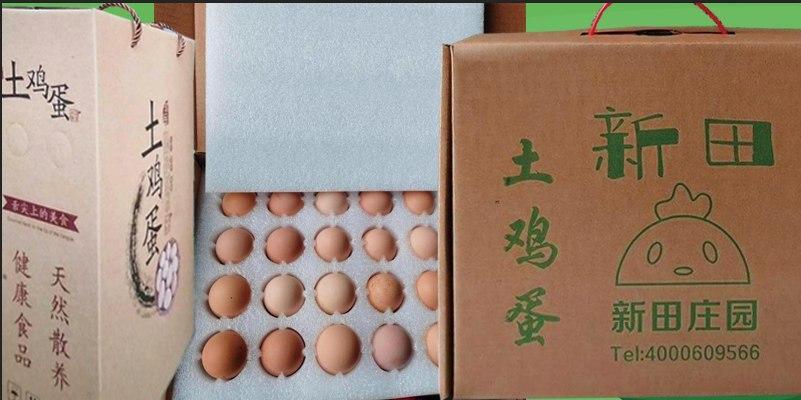 新田庄园如何每天免费领取土鸡蛋